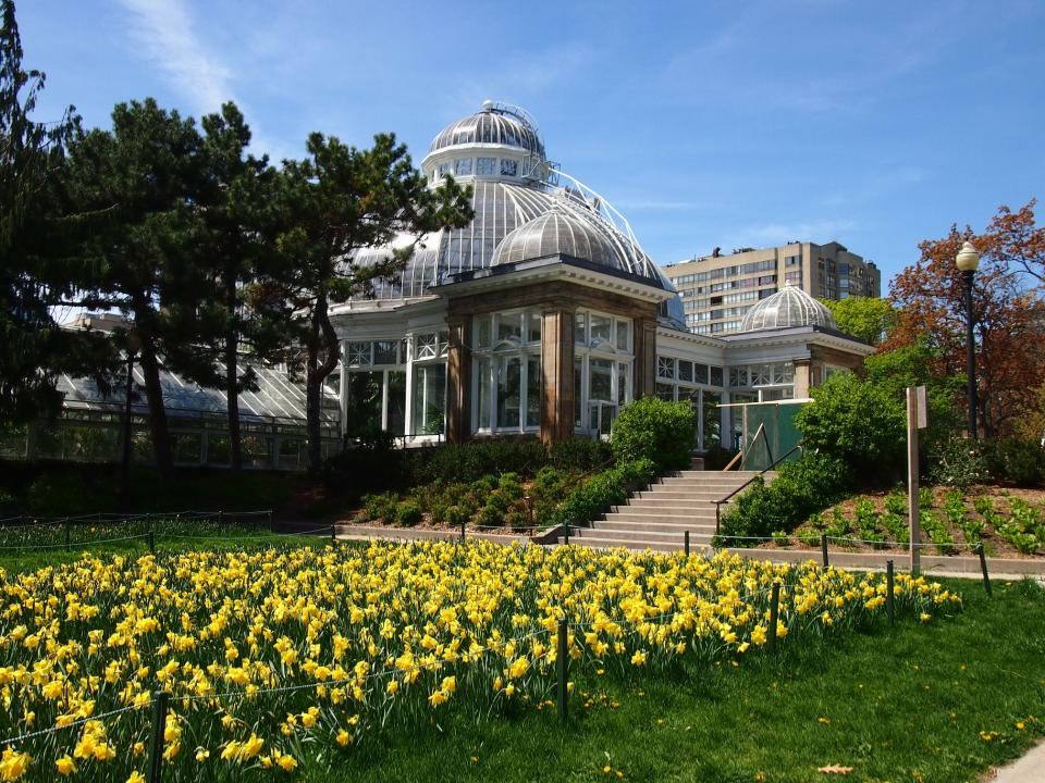 allan gardens cabbagetown toronto
