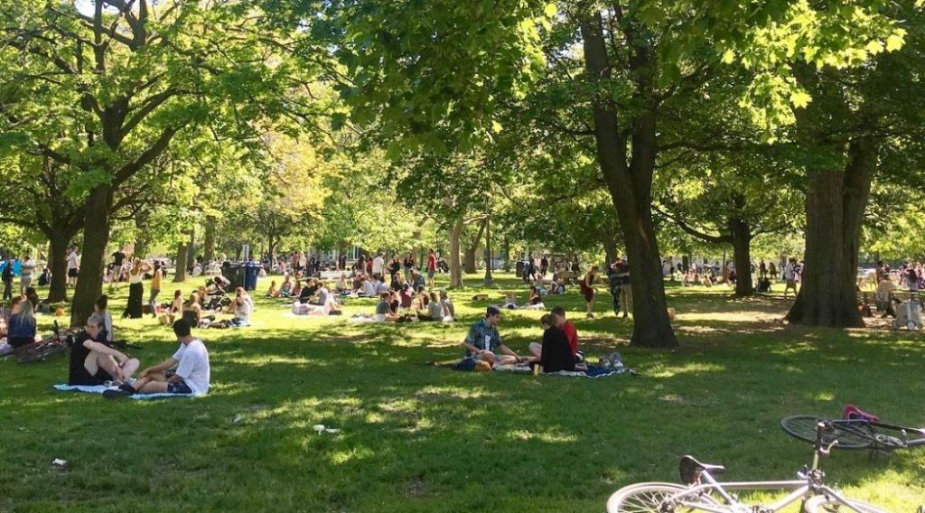 trinity bellwoods park things to do in toronto