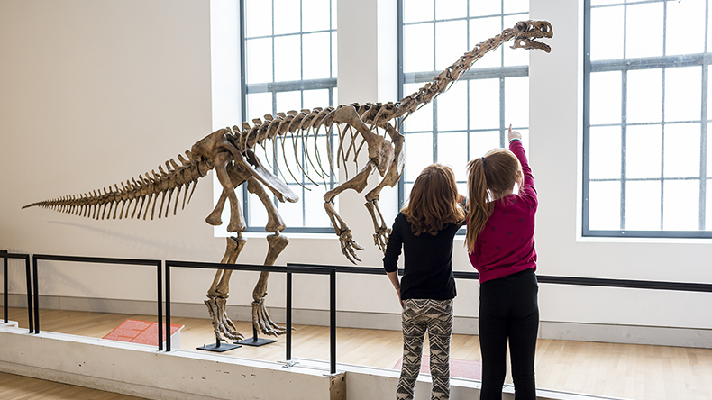 ROM Things to do with kids in Toronto
