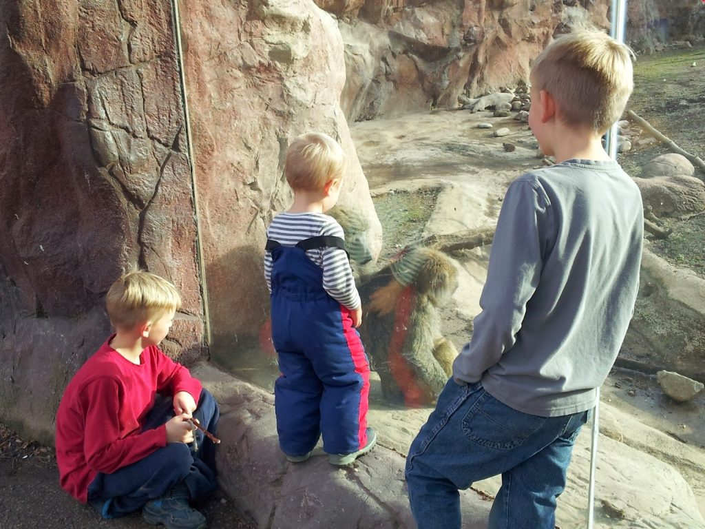 toronto zoo Things to do with kids in Toronto