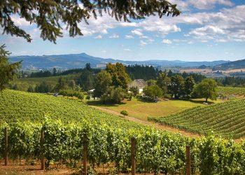 Portland Wine Tours
