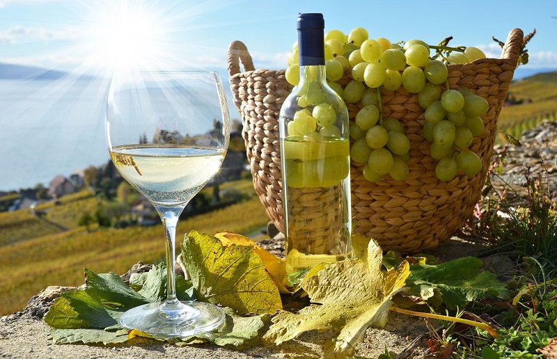 Glass of wine with bottle in front of basket of green grapes. Set on rocky surface outdoors at a wine valley during a sunny day
