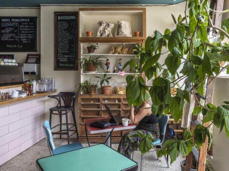 le cagibi montreal vegetarian cafe
